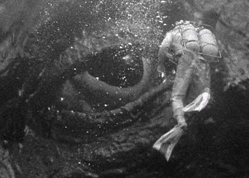 it came from beneath the sea pic 3