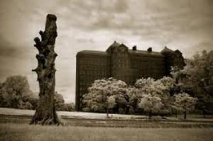 asylum pic 1