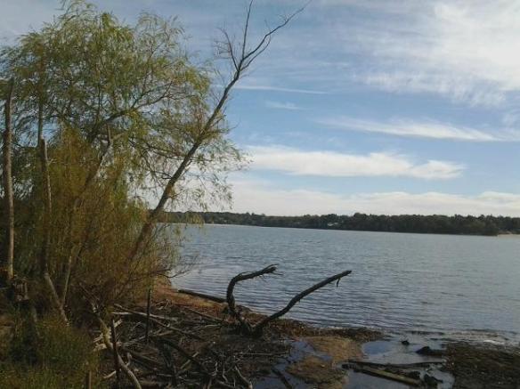 lake ronkonkoma pic 1