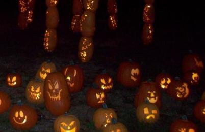 pumpkin walk 125