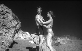 Beach Girls and The Monster pic 11
