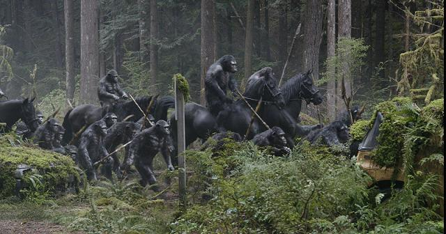 Dawn of the Planet of the Apes (2014) – movie review ... |Dawn Of The Planet Of The Apes 2014