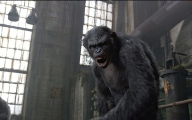 dawn-of-the-planet-of-the-apes pic 8