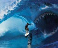 wave catches surfer!