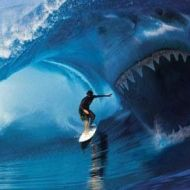 wave catches surfer!