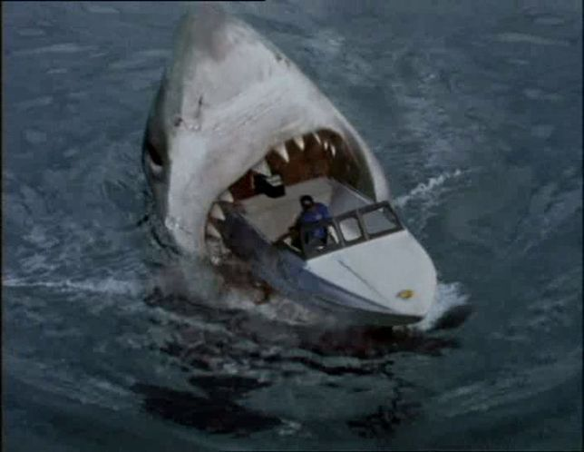 Real Megalodon Shark Attacks Pictures to Pin on Pinterest ...