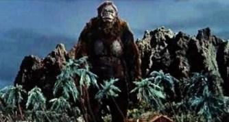 King Kong v Godzilla pic 4