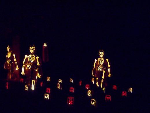 Jack o lantern walk 009