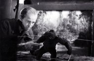 harryhausen-mighty-joe-young