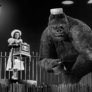 mighty-joe-young pic 3