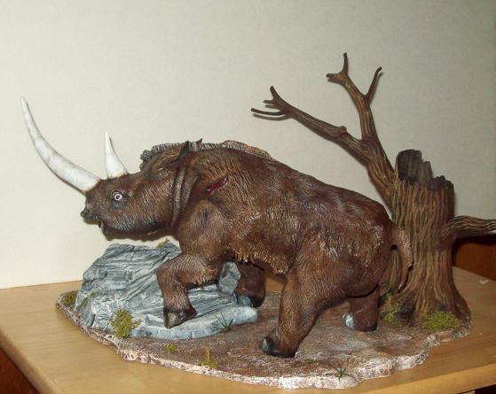 wooly rhino pics 005