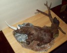wooly rhino pics 008