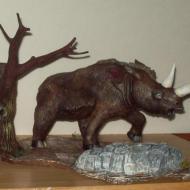 wooly rhino pics 011