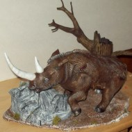 wooly rhino pics 013