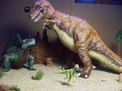 T Rex Dimetrodon battle pic 11