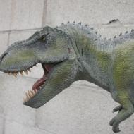 Bob Morales - T Rex