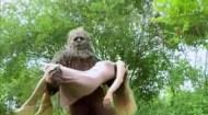 The bigfoot movie