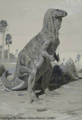 iguanodon - Parker