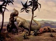 The animal world dinos pic 15