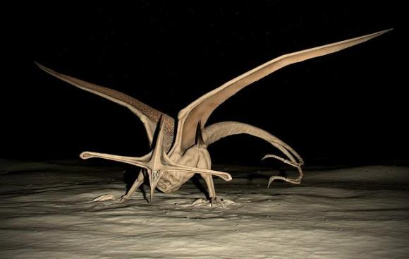 Bioraptor pic 2