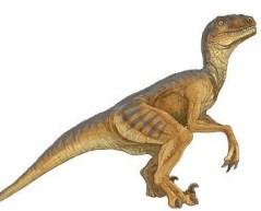 deinonychus - 'raptor'