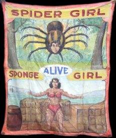 fred-johnson-spider-sponge