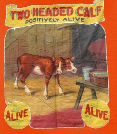 fred-johnson-two-headed-calf