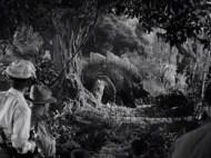 King Kong 1933 pic 1