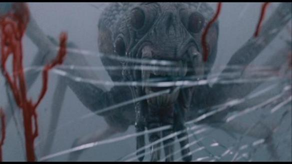 the mist spider pic 7