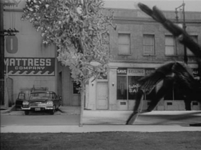 Earth vs the Spider (1958) - pic 12