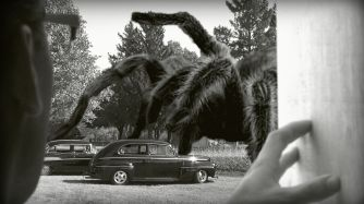 Earth vs the Spider (1958) - pic 14