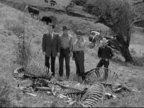 tarantula 1955 pic 3