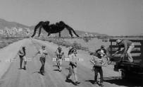 tarantula 1955 pic 8
