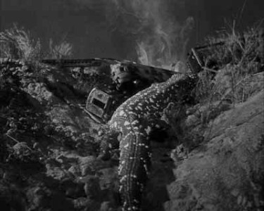 the giant gila monster - pic 4