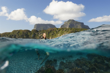 the shallows - pic 4