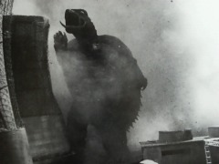 Gamera - the giant monster - pic 9
