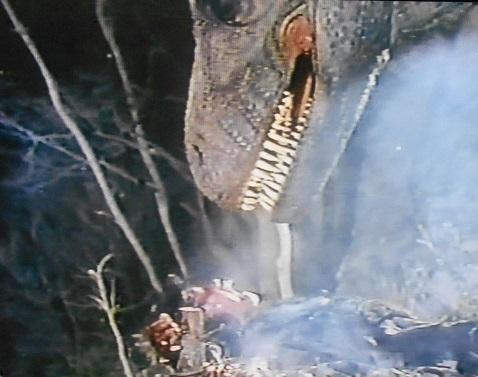Tiranos Claw 1994 - pic 3